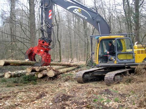 Aufforstungsarbeiten im Reichswald
