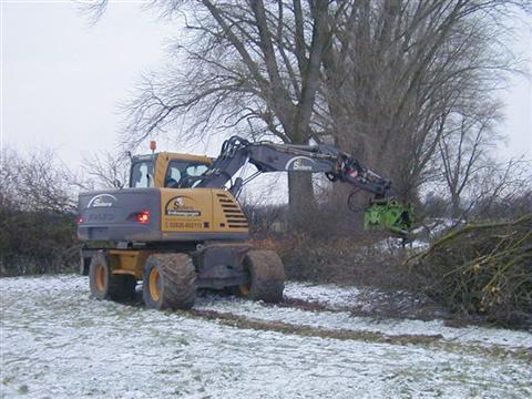 Bäume und Hecken auf Stock setzen in Kranenburg