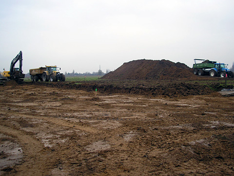 Baufeldräumung in Warbeyen