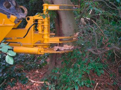 1.März 2007: Der Schnittgriffi ist ein Anbaugerät für den Mobil- bzw. Kettenbagger.